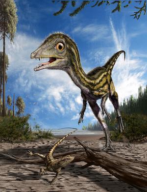 Un dinosauro unico al mondo <em>Scipionyx samniticus</em>, detto 'Ciro', è un fossile eccezionale. E Pietraroja è uno scrigno di paleo-biodiversità 'ad alta risoluzione'