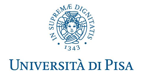 Università di Pisa - Pubblicazione bando di concorso per l'ammissione al Corso di Dottorato Regionale in Scienze della Terra (XXXIV ciclo)